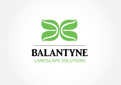 balantyne Dribbble Shot
